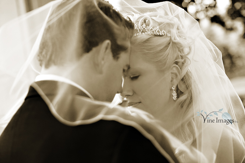 Greystone milton wedding